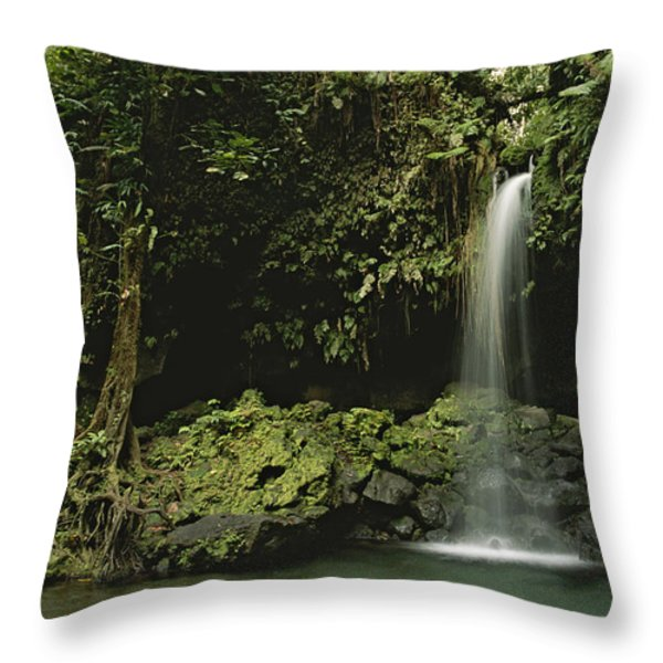 Waterfall And Emerald Pool In A Lush Throw Pillow by Tim Laman