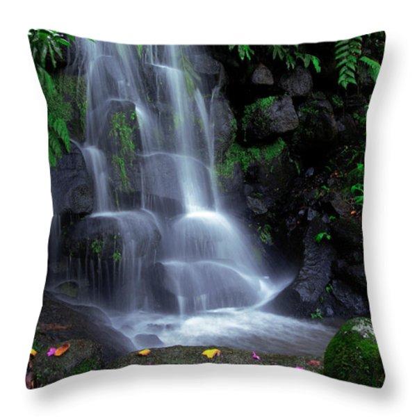Waterfall Throw Pillow by Carlos Caetano