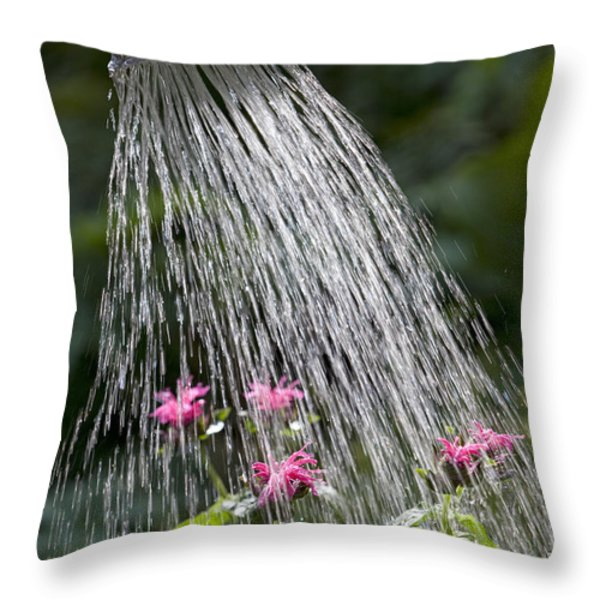Watering Can Throw Pillow by Picture Partners and Photo Researchers