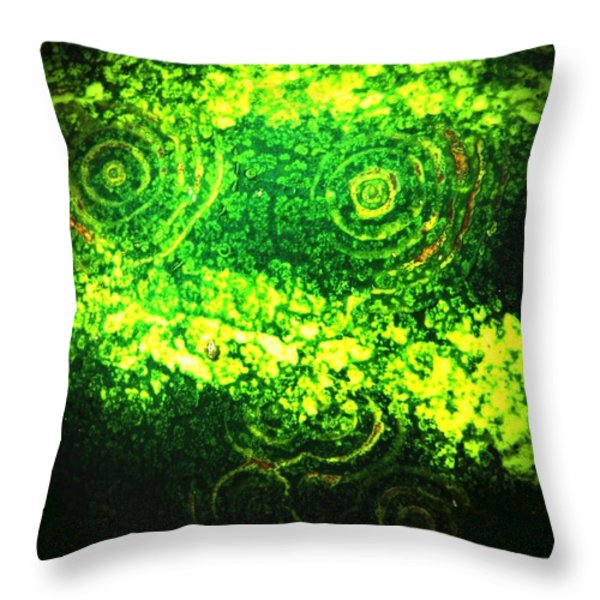 Watermelon Eyes Throw Pillow by Chris Berry