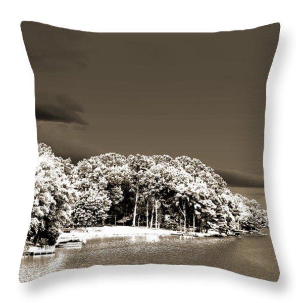 Water's Edge Throw Pillow by Barry Jones