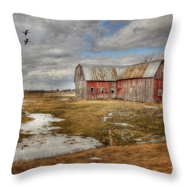 We Lived The Life Throw Pillow by Lori Deiter