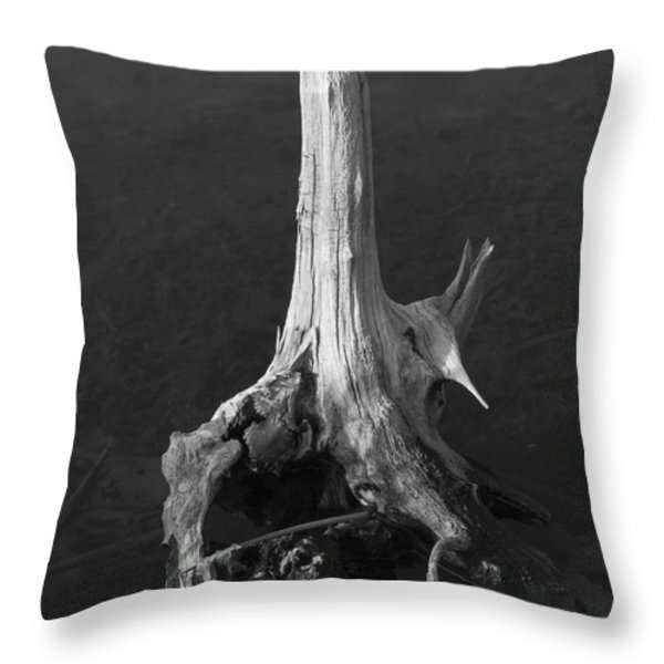 Weathered Stump Throw Pillow by David Gordon