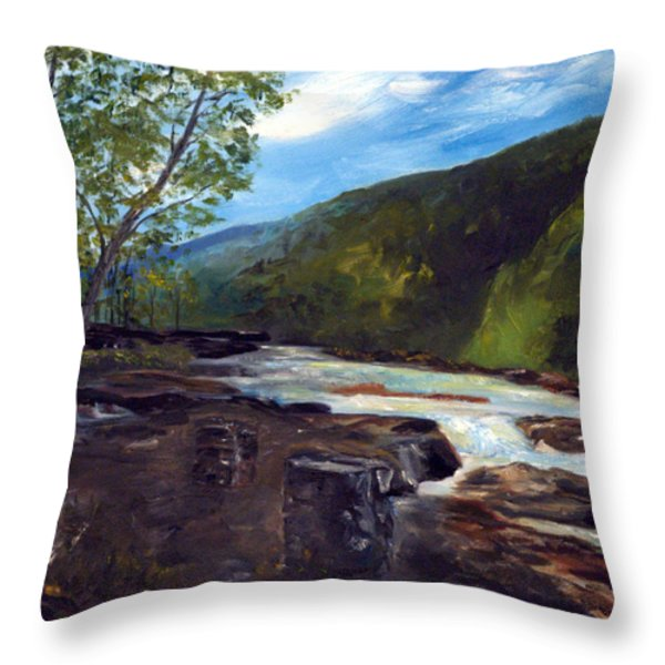Webster Springs Stream Throw Pillow by Phil Burton