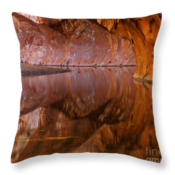 West Fork Illusion Throw Pillow by Mike  Dawson