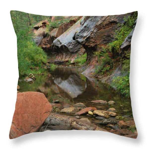 West Fork Trail River And Rock Vertical Throw Pillow by Heather Kirk