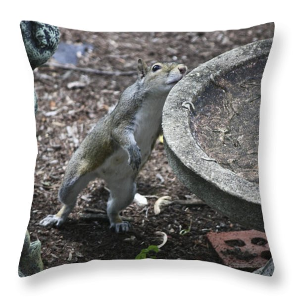 Whadaya Mean There Is No Water Throw Pillow by Teresa Mucha