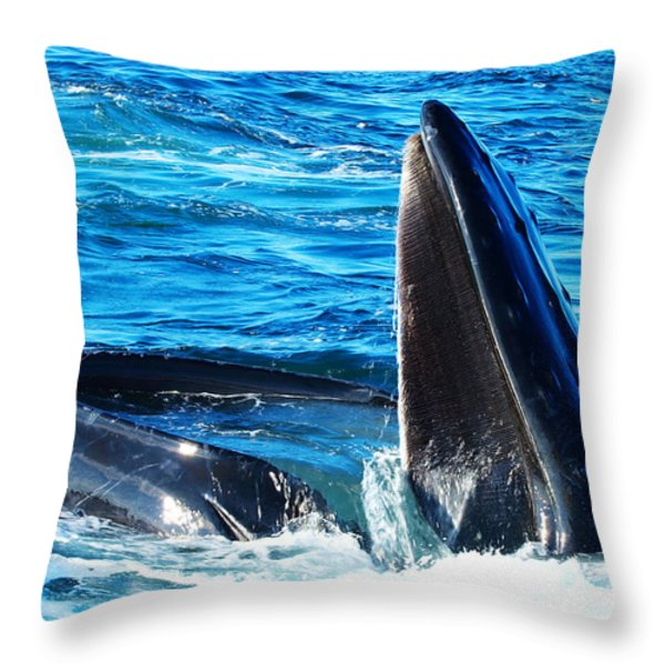 Whale's opening mouth Throw Pillow by Paul Ge