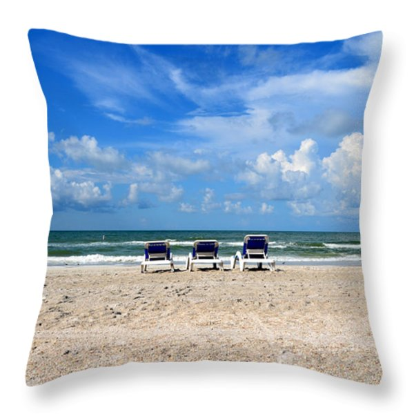 What A View Throw Pillow by Charles Bacon Jr