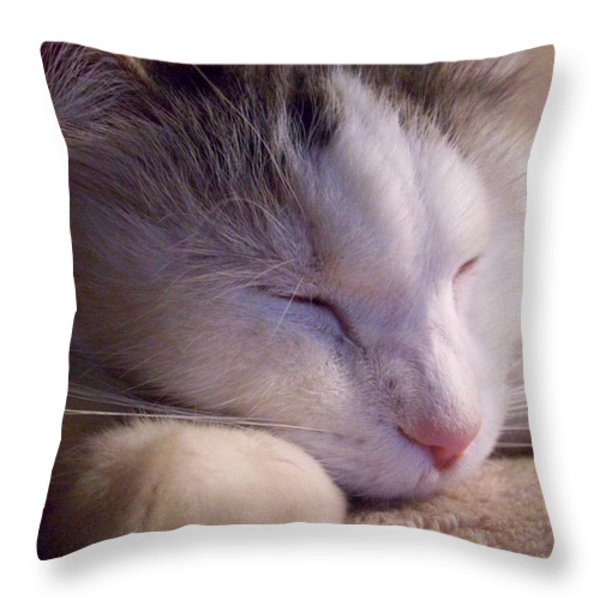 What Is A Cat Throw Pillow by Ginny Schmidt