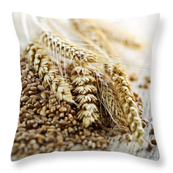 Wheat Ears And Grain Throw Pillow by Elena Elisseeva
