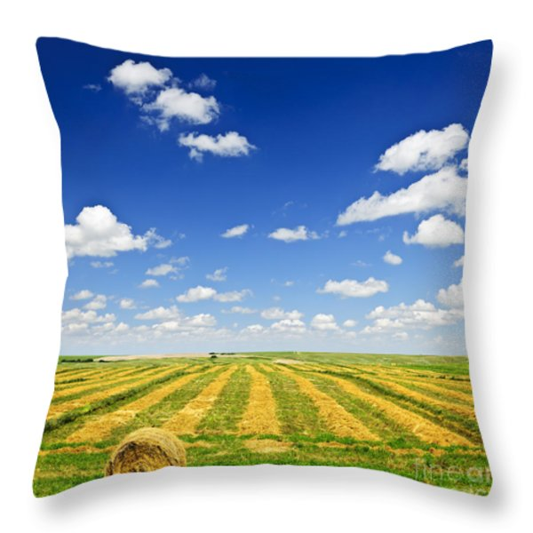 Wheat farm field at harvest Throw Pillow by Elena Elisseeva