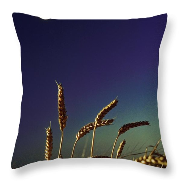 Wheat Field At Night Under The Moon Throw Pillow by The Irish Image Collection