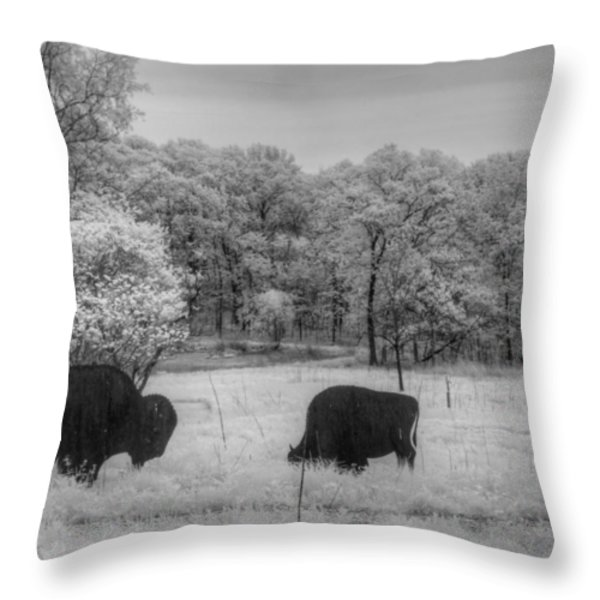 Where the Buffalo Roam Throw Pillow by Jane Linders