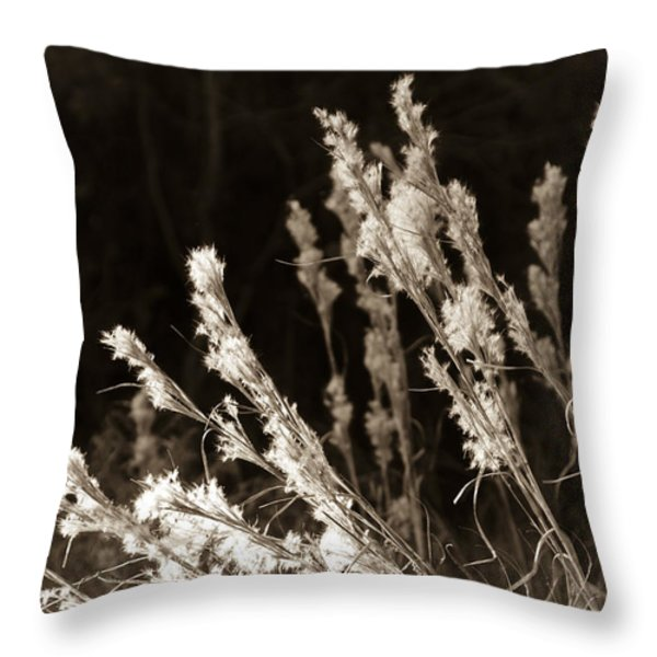 Whisper Gently Throw Pillow by Carolyn Marshall
