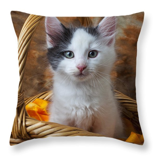 White And Gray Kitty Throw Pillow by Garry Gay