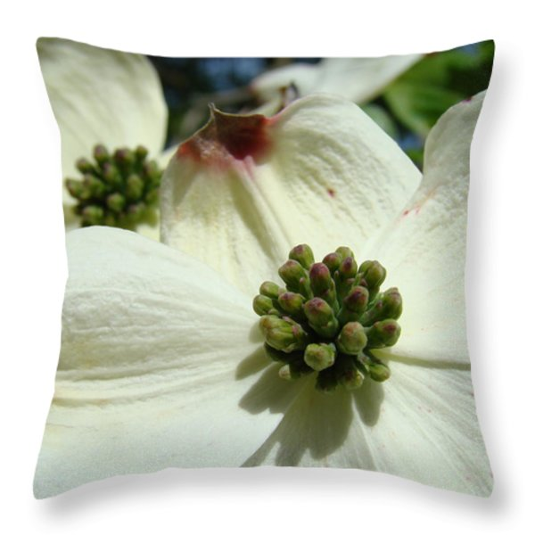 White Dogwood Flowers art prints Floral Throw Pillow by Baslee Troutman