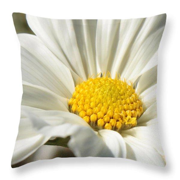 White Flower Throw Pillow by Carol Groenen