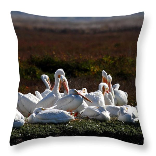 White Pelicans Throw Pillow by Wingsdomain Art and Photography