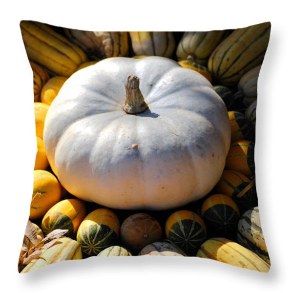 White Pumpkin Throw Pillow by Jai Johnson