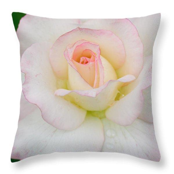 White Rose With Pink Edge Throw Pillow by Atiketta Sangasaeng