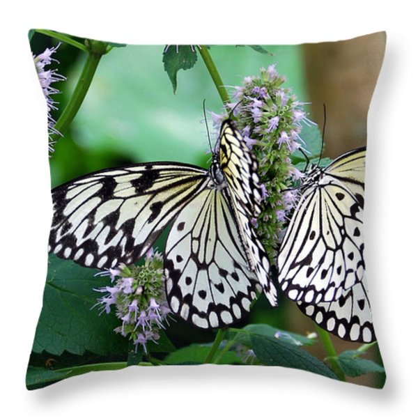 White Throw Pillow by Skip Willits