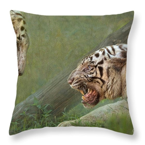 White tiger growling at her mate Throw Pillow by Louise Heusinkveld