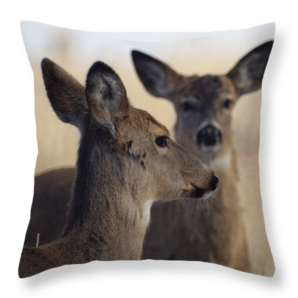 Whitetail Deer Throw Pillow by Ernie Echols
