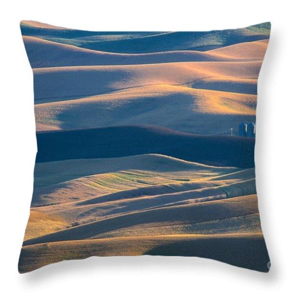 Whitman County Grain Silo Throw Pillow by Sandra Bronstein