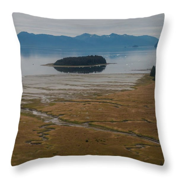 Wild Alaska Coast Throw Pillow by Mike Reid