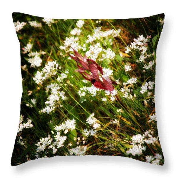 wild flowers Throw Pillow by Stylianos Kleanthous