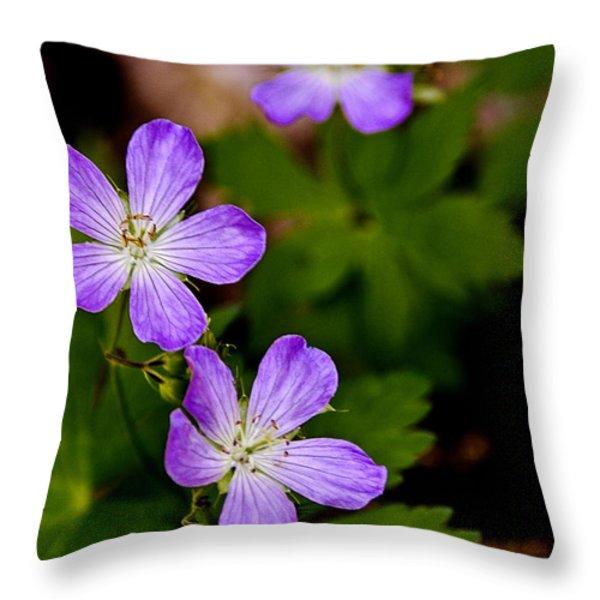 Wild Geranium Throw Pillow by LeeAnn McLaneGoetz McLaneGoetzStudioLLCcom