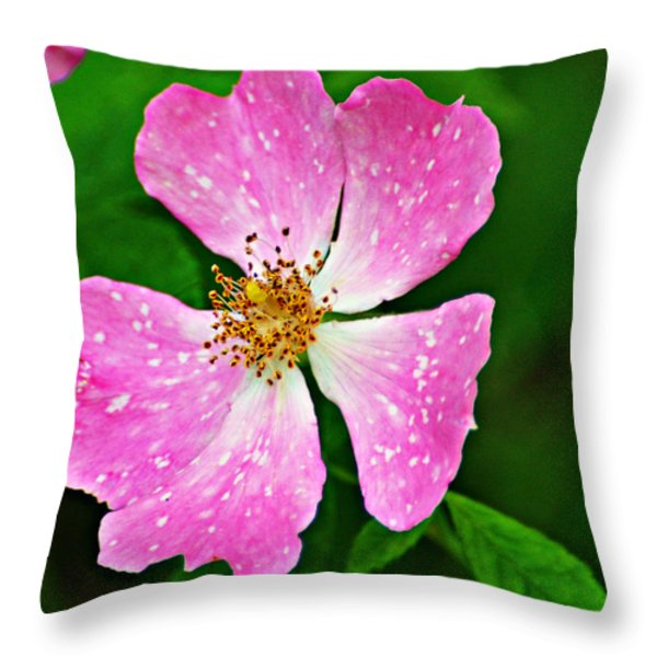 Wild Purple Throw Pillow by Marty Koch