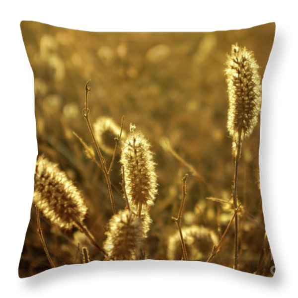 Wild Spikes Throw Pillow by Carlos Caetano