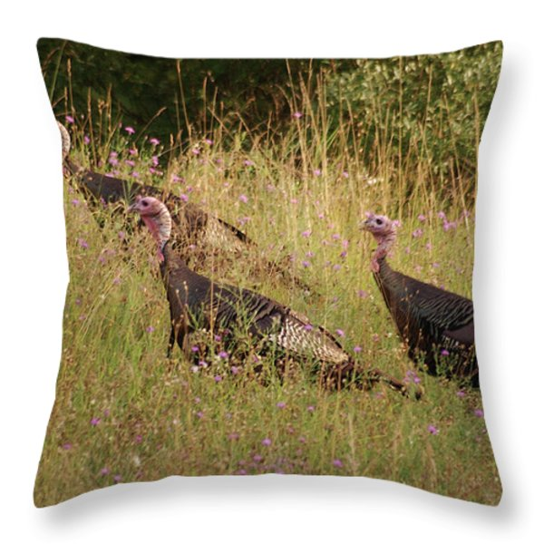 Wild Turkeys Throw Pillow by Michael Peychich