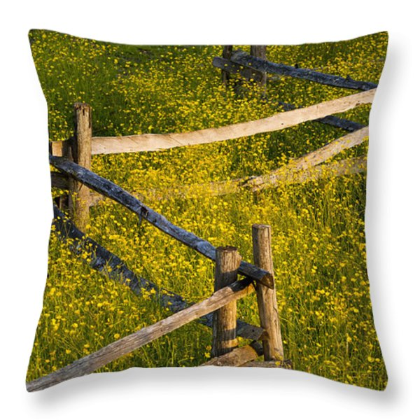 Wildflowers And A Wooden Fence At Throw Pillow by David Chapman