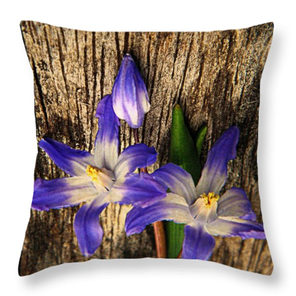 Wildflowers On Wood Throw Pillow by Chris Berry