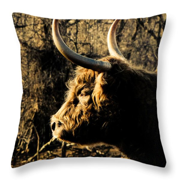 Wildthings Throw Pillow by Jessica Brawley