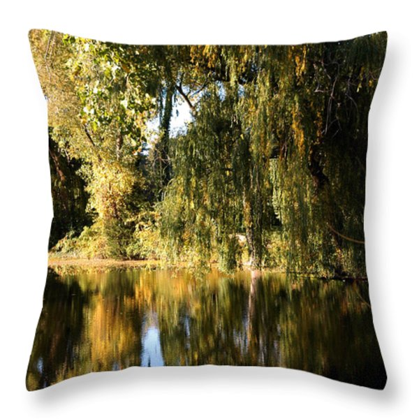 Willow Mirror Throw Pillow by LeeAnn McLaneGoetz McLaneGoetzStudioLLCcom