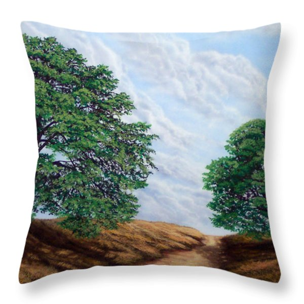 Windblown Clouds Throw Pillow by Frank Wilson