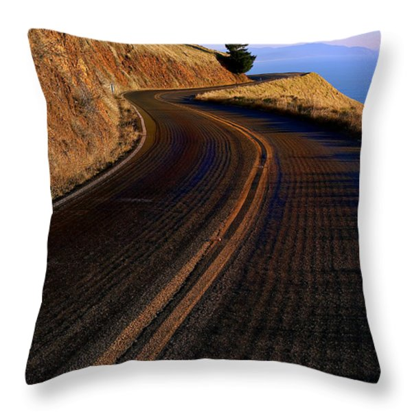 Winding road Throw Pillow by Garry Gay