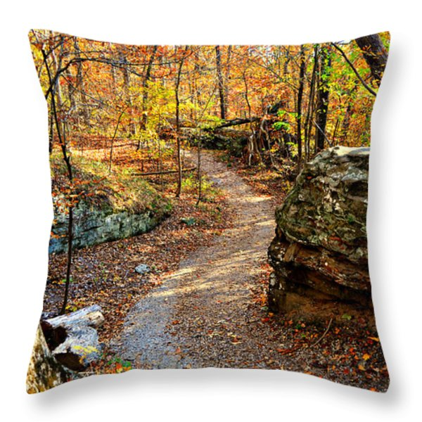Winding Trail Throw Pillow by Marty Koch