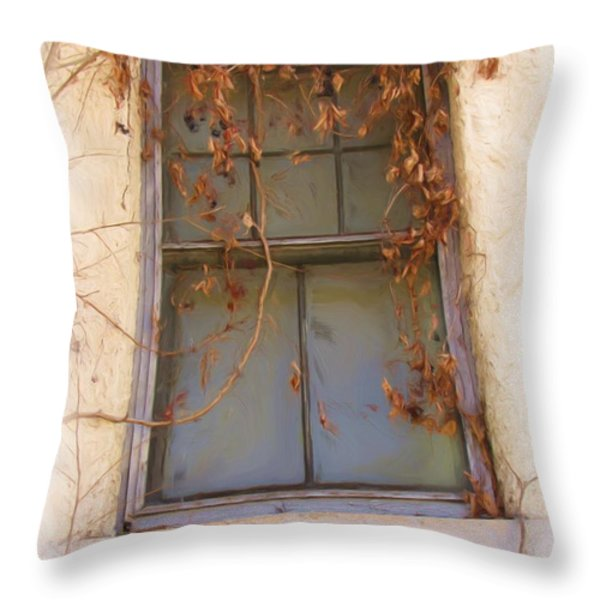 Window In Time Throw Pillow by FeVa  Fotos