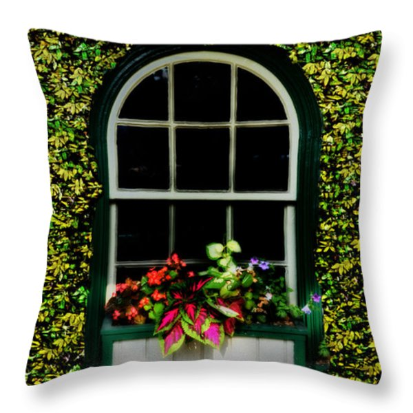 Window On An Ivy Covered Wall Throw Pillow by Bill Cannon
