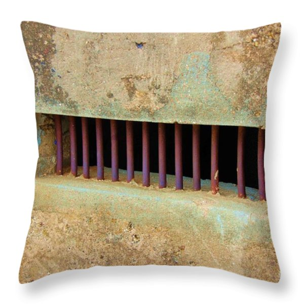 Window to the World Throw Pillow by Debbi Granruth