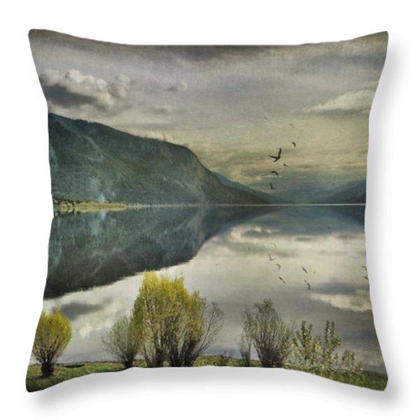 Window View Throw Pillow by Kym Clarke