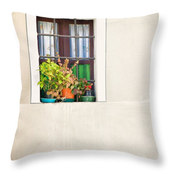 Window With White Frame And Vases Throw Pillow by Silvia Ganora