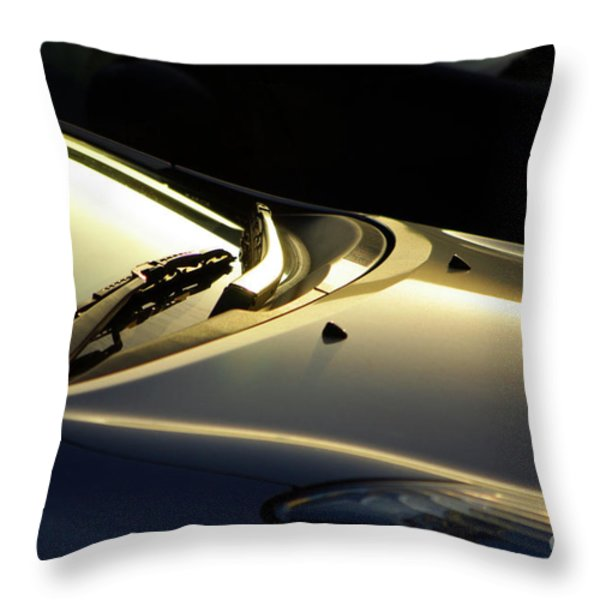 Windshield Wiper Throw Pillow by Carlos Caetano