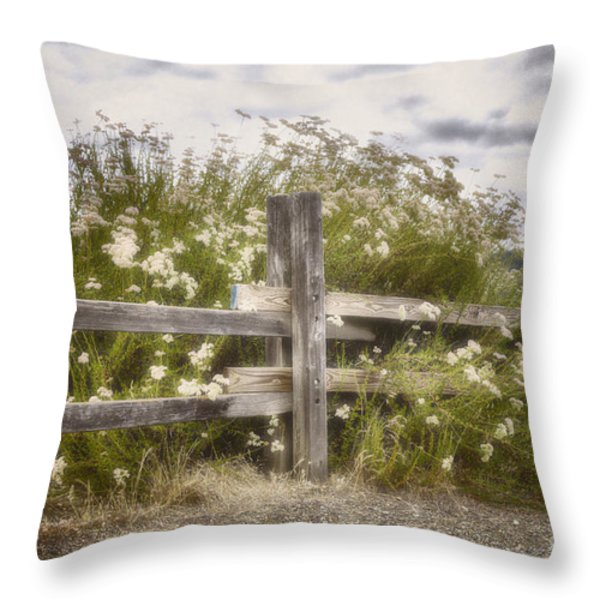 Windswept Throw Pillow by Joan Carroll