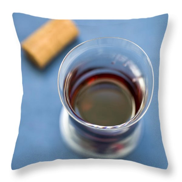 Wine Tasting Throw Pillow by Frank Tschakert